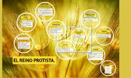 Copy of EL REINO PROTISTA.