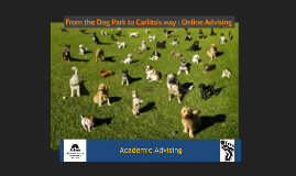 From the Dog Park to Carlito's way: Online Advising