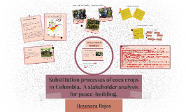 Substitution processes of coca crops in Colombia.  A stakeho