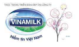 Copy of Copy of Thực Trạng Triển Khai ERP tại Vinamilk