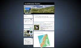 Scandanavian Tundra