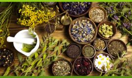 Alternative/Herbal Medicine
