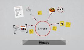 Copy of Hígado