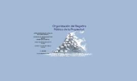 Copy of Organizacion del Registro Público de la Propiedad.