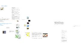 RNA & Molecular Biology