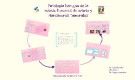 Copy of Patologia Benigna de la mama