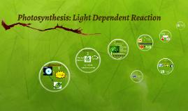 Photosynthesis: Light Dependent Reaction