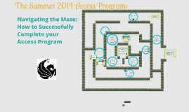 The 2014 Summer Access Program