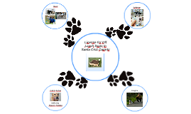 Off Leash Dogs In Santa Cruz County
