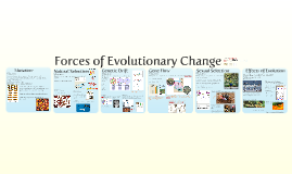 3. Ch 23-1:  Evolutionary Forces