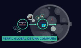 PERFIL GLOBAL DE UNA COMPAÑIA