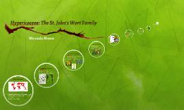 Hypericaceae: The St. John's Wort Family