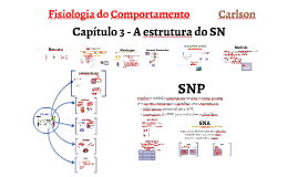Fisiologia do Comportamento
