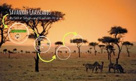 Savannah Grasslands