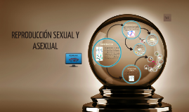 Copy of REPRODUCCIÓN SEXUAL Y ASEXUAL