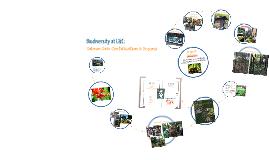 Biodiversity at L&C