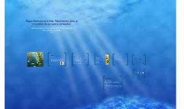 Algas Marinas en Chile: Documento para el incentivo de su us