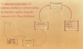 microcirculación y el sistema linfático