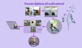 Copy of Procesos Quimicos Aceite Esencial Clavos y Canela,Casero Ángel