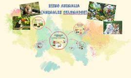 Copy of Reino Animal