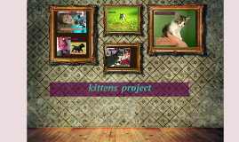 kittens  project