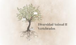 Diversidad Animal II