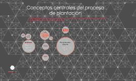 Conceptos centrales del proceso de plantación