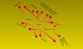 Profesinio informavimo mokykloje schema