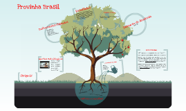 Copy of Provinha Brasil