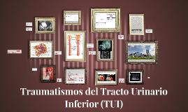 Traumatismos del Tracto Urinario Inferio (TUI)