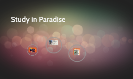 Study in Paradise