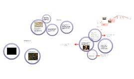 Literatuurgeschiedenis: middeleeuwen