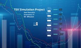 TSX Simulation Project