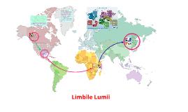 Copy of Limbile Lumii