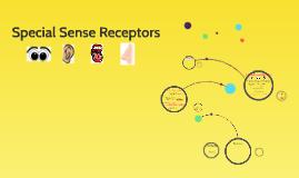 Copy of Special Sense Receptors