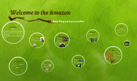 Welcome to the Amazon