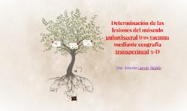 Determinación de las lesiones del músculo pubovisceral tras