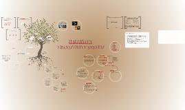 Copy of HALLIDAY'S TRANSITIVITY SYSTEM