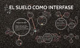 EL SUELO COMO INTERFASE