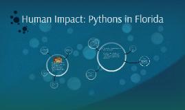 Human Impact: Pythons in Florida