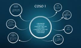 COSO I Y II