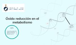 Óxido reducción en el metabolismo