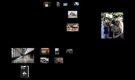 Copy of TedxTirana