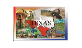 Overview of Texas History