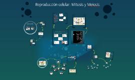 Reproducción celular: Mitosis y Meiosis