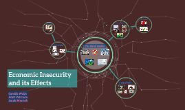 Economic Insecurity and its Effects