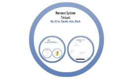 Nervous System Tissues