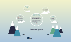 Imune System
