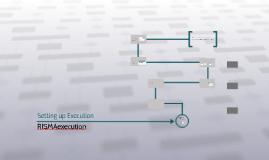 How to setup RISMAexecution