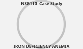 NSG110 Case Study